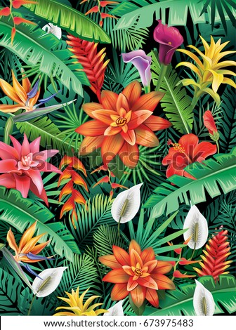 background from tropical flowers
