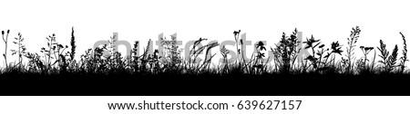 background grass natural