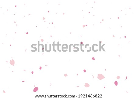 Background of the cherry blossom petals snowstorm Foto stock ©