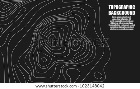 Background of the topographic map. Topographic map lines, contour background. Geographic grid, vector abstract. #1023148042