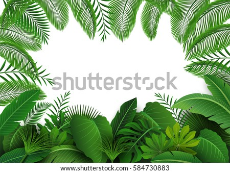 Frond Images | Download Free Images