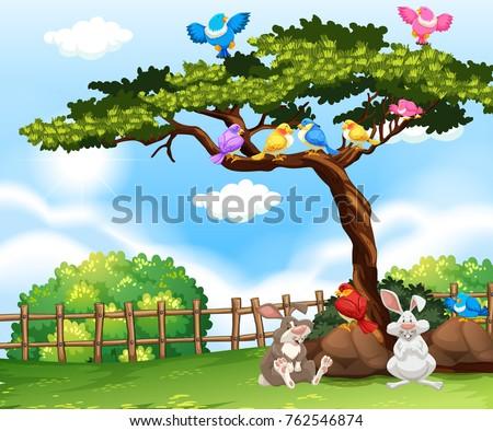 background scene with birds on