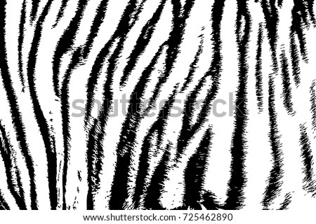 background texture tiger stripe