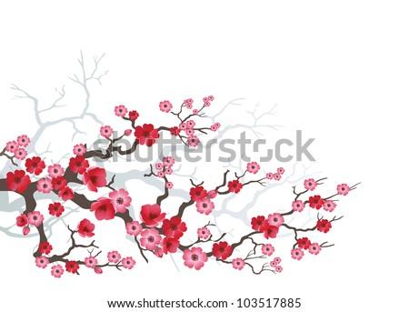 background to blooming sakura