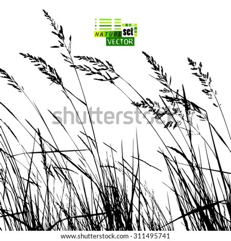 background tracing grass vector
