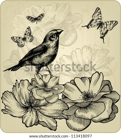 stock-vector-background-with-blooming-roses-birds-and-flying-butterflies-vector