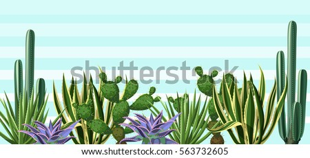 background with cactuses and...