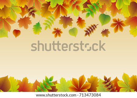 Background with colourful autumnal leaves. Vector.