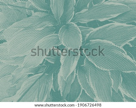 Background with engraved leafs in woodcut style.