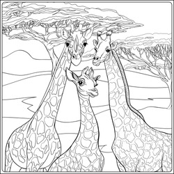 Background with giraffe family.  Outline hand drawing. Good for coloring page for theadult coloring book.. Vector Illustration.