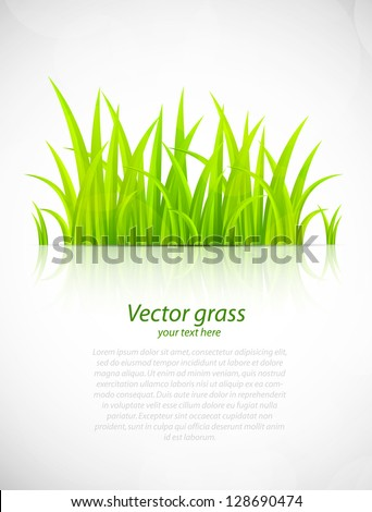 Background with grass - stock vector
