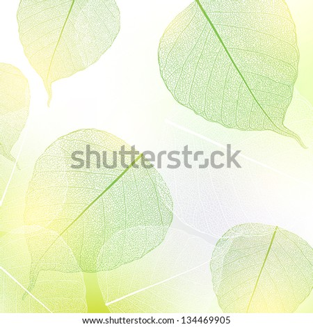 background with green and white