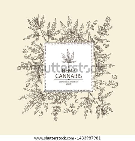 background with hemp  cannabis