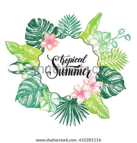 Background with Ink hand drawn tropical elements - Banana leaves, orchid flowers, frangipani, monstera. Template for cards, banners, flyers with brush calligraphy style lettering. Vector illustration.