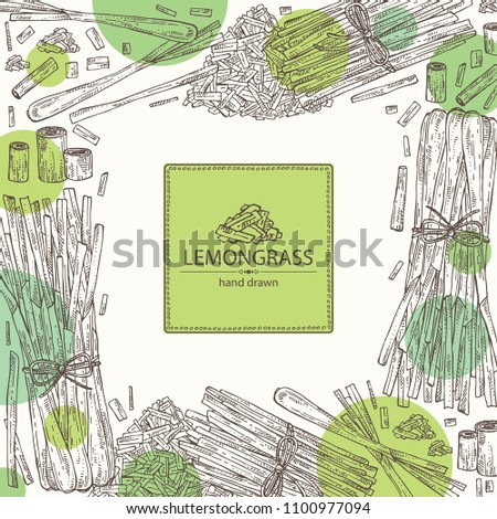 Background with lemongrass: bunch, plant and dry lemongrass. Vector hand drawn illustration.
