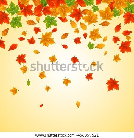 background with maple autumn