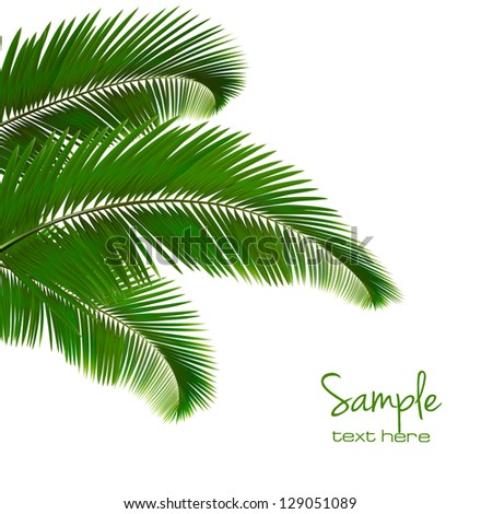Background with palm leaves Vector illustration