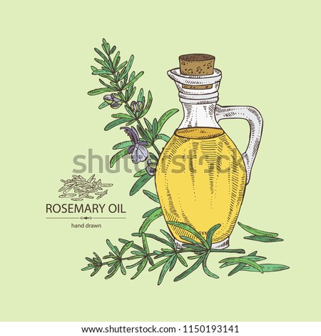 Background with rosemary and rosemary oil . Vector hand drawn illustration.