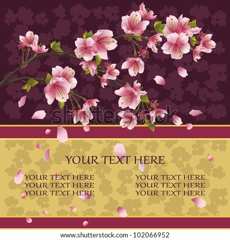 Background with sakura blossom, Japanese cherry tree, symbol oriental culture, with flying petals, place for text. Vector illustration