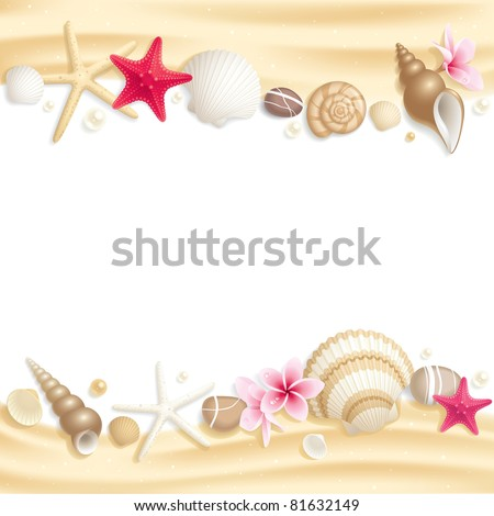 background with seashells and