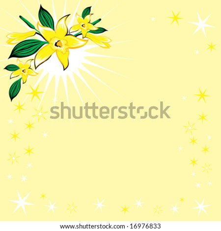 Vanilla Flower Picture on Background With Stars And Vanilla Flower Stock Vector 16976833