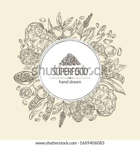 Background with super food: reishi mushroom, morinda, noni fruit, camu camu, carob pods and chia. Super food. Vector hand drawn illustration. Stock photo ©