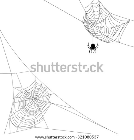 background with two spider webs