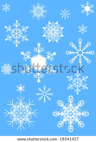 Background with various snowflakes vector