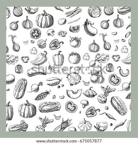 Background with Vegetables.Templates for label design with hand drawn linear vegetables. Can be used for vegan products, brochures, banner, restaurant menu, farmers market and organic food store #675057877