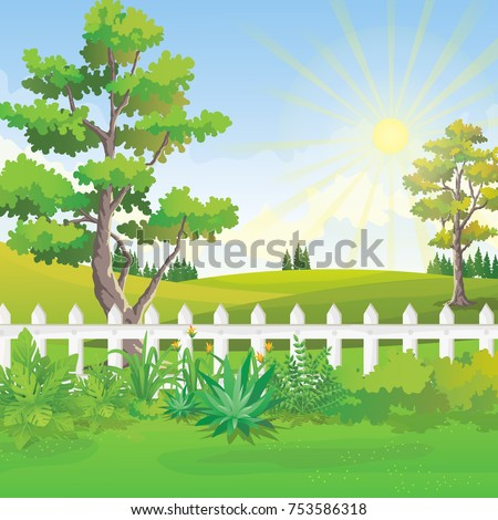 Backyard garden vector illustration with big tree and rolling hills. Sunrise scenery in beautiful green park.