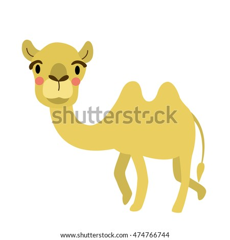 Bactrian Camel animal cartoon character isolated on white background.