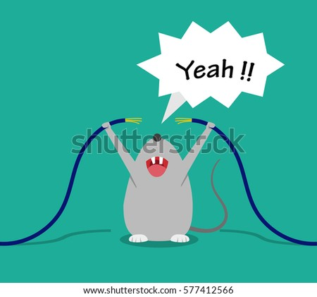 bad rat happy after bite cable