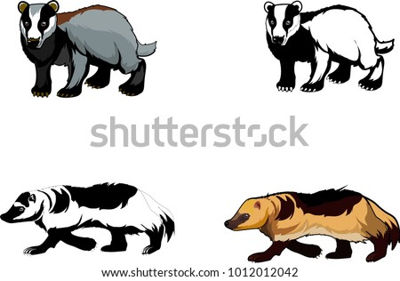 badgers and wolverines isolated