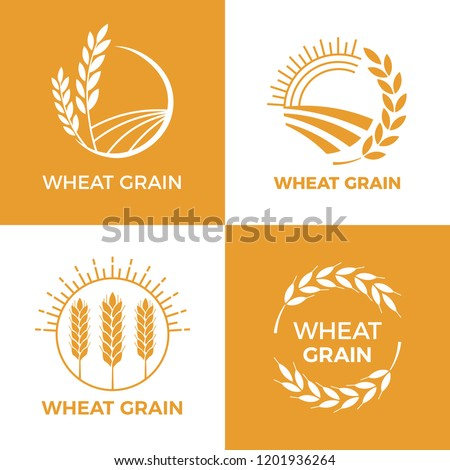Baked wheat logo. Field wheats grain label, bake elements. Food baking insignia harvest barley logo, grain wheat field bread bakery food awards vintage vector illustration set