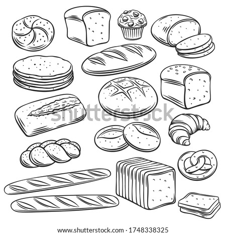 Bakery bread outline vector of rye, whole grain and wheat bread, pretzel, muffin, pita , ciabatta, croissant, bagel, toast bread, french baguette for design menu bakery.