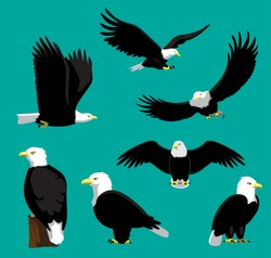 Bald Eagle Cartoon Vector Illustration