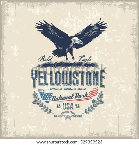 Bald Eagle, national Park Yellowstone, vintage, illustration, vector