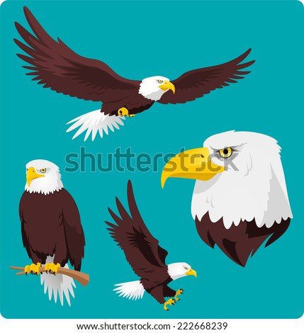 Bald Eagle vector cartoon illustrations of four recognizable stances and situations of pride and power