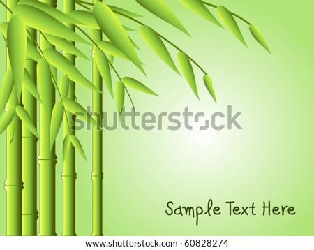 bamboo background