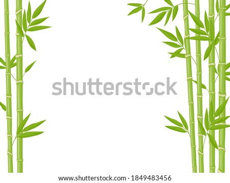 Bamboo background. Asian fresh green bamboo stalks, natural bamboo plant backdrop, stick plants with foliage vector illustration. Natural tree branches with leaves, ecological chinese plants