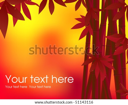 Bamboo background in the sunset, vector illustration