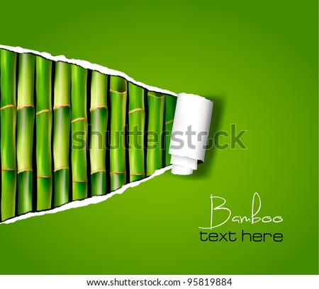 bamboo background with ripped