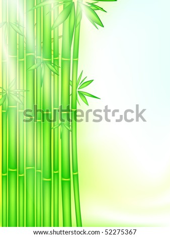 bamboo forest in the rays of the rising sun, EPS 10