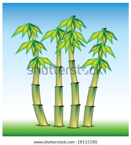 bamboo from asia, set in vector mode