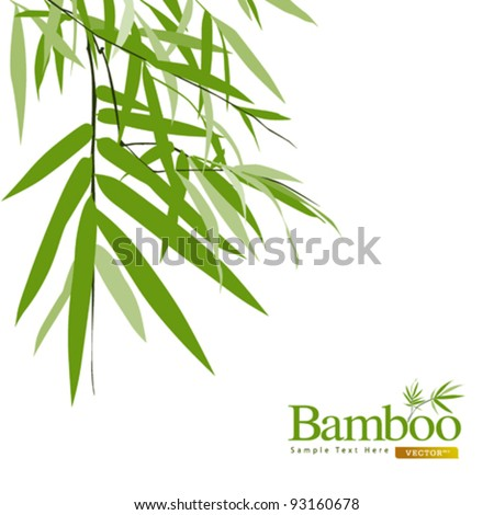 Bamboo isolated greeting card vector illustration