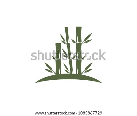 Bamboo leaf icon logo vector