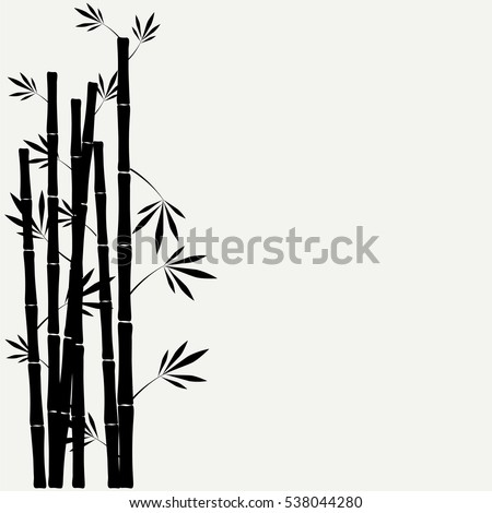 bamboo stems with leaves on