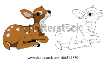 bamby  fawn  coloring
