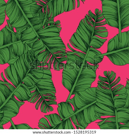 banana leaves isolated on hot pink background. Tropical seamless pattern. Stock photo ©