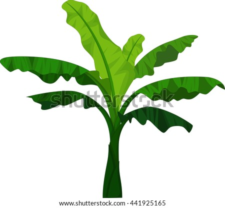 Banana Tree Vector Download Free Vector Art Stock Graphics Images